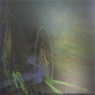 "Phoenix, (c) 2014 Lianne Todd 24x24"" original metal print (single edition) $450.00"