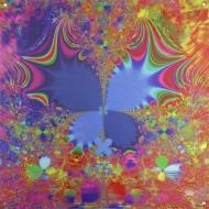 """Butterflire. Lianne Todd. Digital Art printed on metal, single edition. 20x20"""" $350.00"""