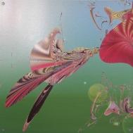 "Pollinator. Artist Lianne Todd Digital Art printed on metal, single edition 16x16"" $240.00"